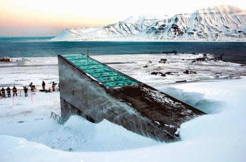 2135227Semillas-Bunker-Noruega-Fin-Del-Mundo